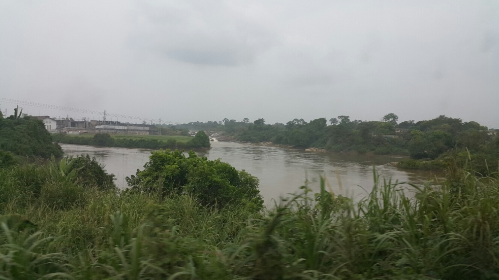 Forêt Douala Yaounde