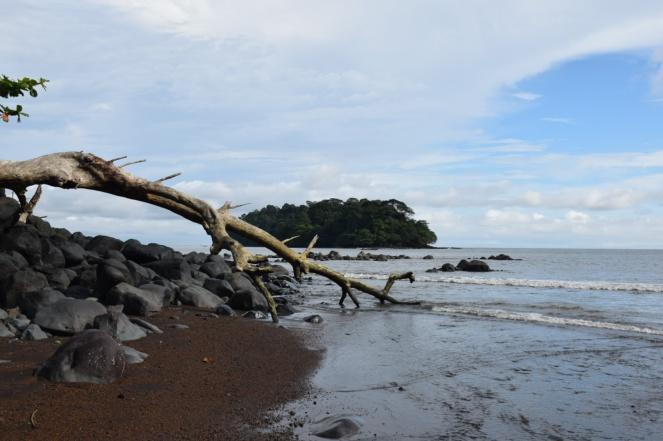 ile d en face vue de la plage