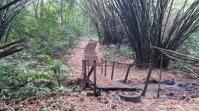 le pont bimbia